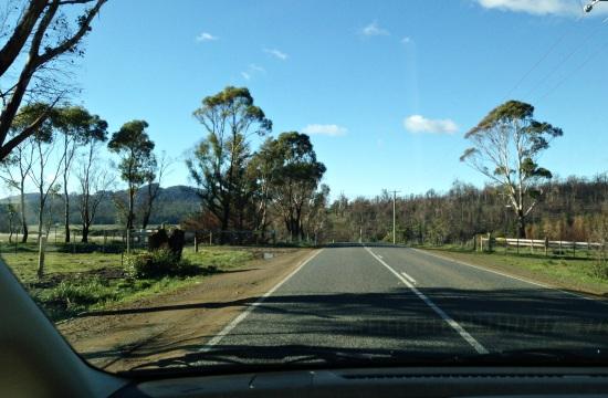 tasmania_mz (14)